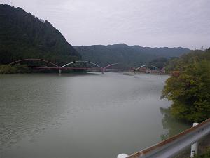 20101114_c_001w300